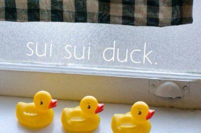 sui sui duck